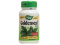 Goldenseal 金印草 (北美黃蓮)
