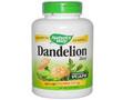 Dandelion Root  蒲公英根