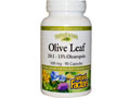 Olive Leaf Extract 橄欖葉精華