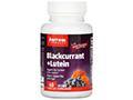 Blackcurrant-Lutein黑加侖子-葉黃素